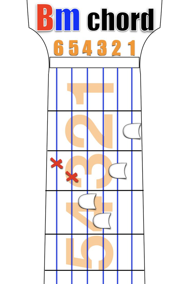 B minor chord guitar lessons for beginners video in