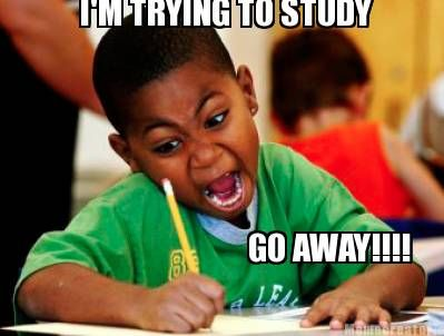 I'M TRYING TO STUDY GO AWAY!!!! - When you finally hit that sweet spot where your brain actually starts working...
