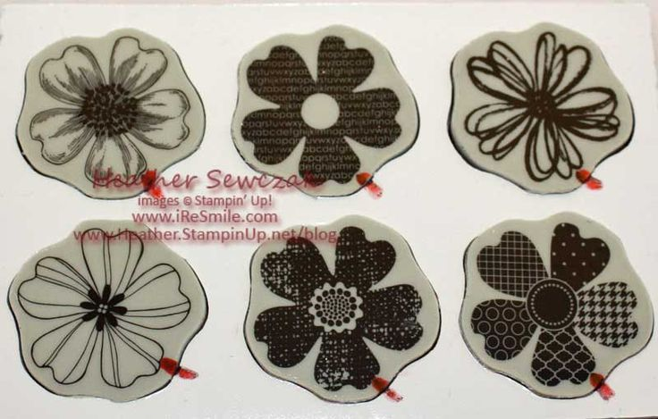 Great photo tips for mounting Stampin Up Flower Shop stamp set & matching punch