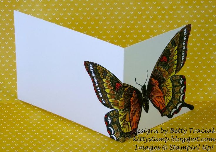 Blendabilities Swallowtail Celebration- Back View by kittystamp - Cards and Paper Crafts at Splitcoaststampers