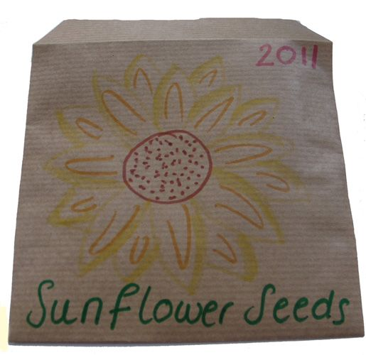 Make Your Own Seed Packets, Childrens Gardening Activity