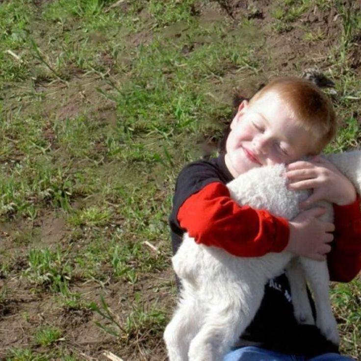 Zondag 9 juli: scha-a-a-apendag! Al decennialang ongekend populair. Die fluffie diertjes hebben dan ook een onweerstaanbare aantrekkingskracht. Met giga grote & gezellige braderie, muziek, een boel lekkers en demonstraties van de oude ambachten. Have fun! #schapen #dieren #wol #knuffelen #uden #hierhoudenwevan⠀