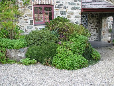 One of the newest trends in gardening in the UK is the gravel garden. Gravel is used right up to the house in some cases and gravel mulch is used in combination with other materials in others.