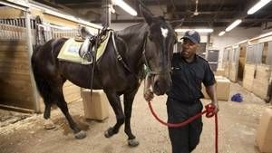 The Toronto Police Service Mounted Unit made history on the weekend, becoming the first team to win every category at the North American Police Equestrian Championships in Virginia.