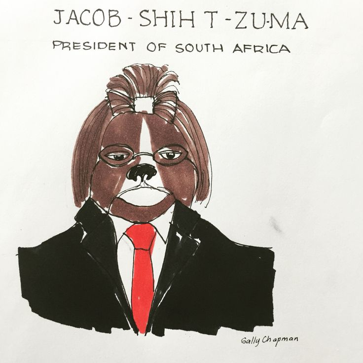 Famous dog series Jacob Zuma