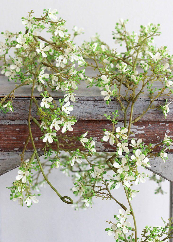 best  white flowers ideas only on   wedding flower, Beautiful flower
