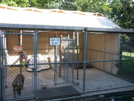 outdoor kennel on concrete with carport tarps with