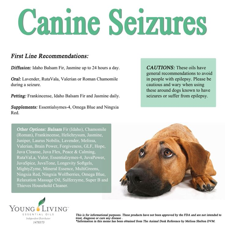 Young Living Essential Oils Canine Seizures Protocol. www.facebook.com/YoungLivinghasanoilforthat