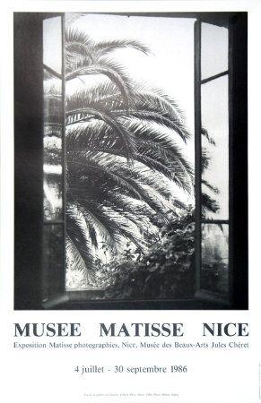 Le palmier Reproduction d'art