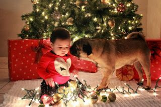 Christmas Card ideas Cute Baby and dog Christmas picture onthezlist.blogspot.com