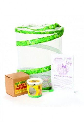 Vente-Achat : kit élevage coccinelle, papillon - Prix moins cher - kit j'élève des coccinelles - adalia box - achatnature - spécialiste kit élevage