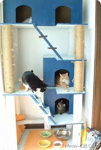 Cat tree plan 4 for pets para las mascotas pinterest for Cat tree blueprints