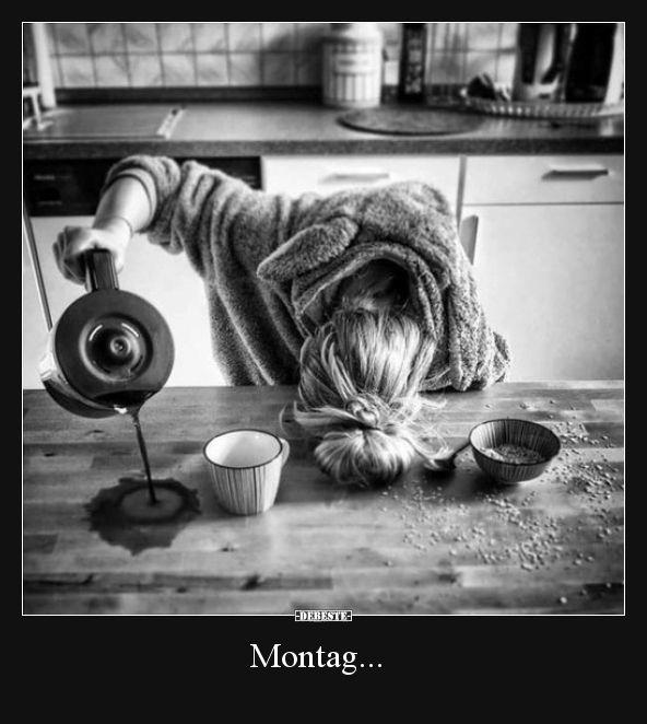 Montag… | Lustige Bilder, Sprüche, Witze, echt …
