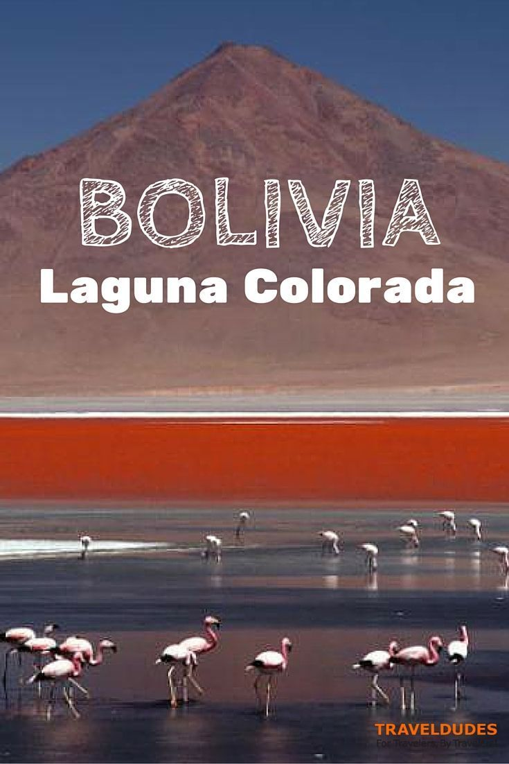 Due to the minerals the laguna colorada in Bolivia is shining in amazing red and white colors