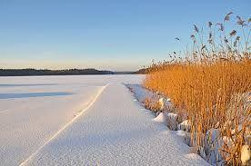 Znalezione obrazy dla zapytania augustów zima