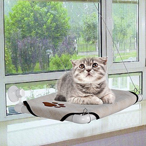 Cat Window Perch Cozy Kitty Window Bed Stable Kitty Cot Sunny Seat *** More info could be found at the image url. #CatBedsandBlankets