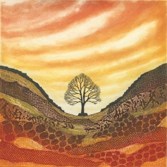 Sunset Sycamore Gap by Rebecca Vincent | Artfinder
