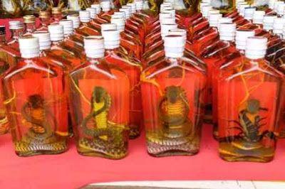 Whiskey Ular & Kalajengking Minuman Vitalitas Pria di Laos