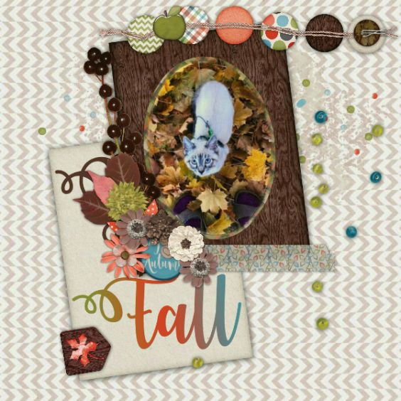 2.00 Tuesday for Miss Mis Designs from GingerScraps  Grab this amazing kit for just $2, today only. Layout created using Capturing Fall Kit http://store.gingerscraps.net/Capturing-Fall-Full-Kit-by-Miss-Mis-Designs.html