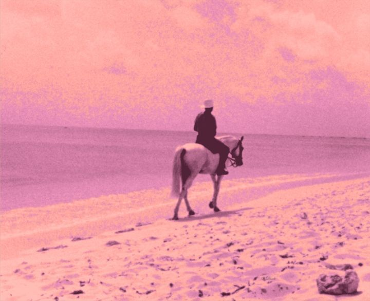 A Lone Mounted Police in Barbados - Willy Decade