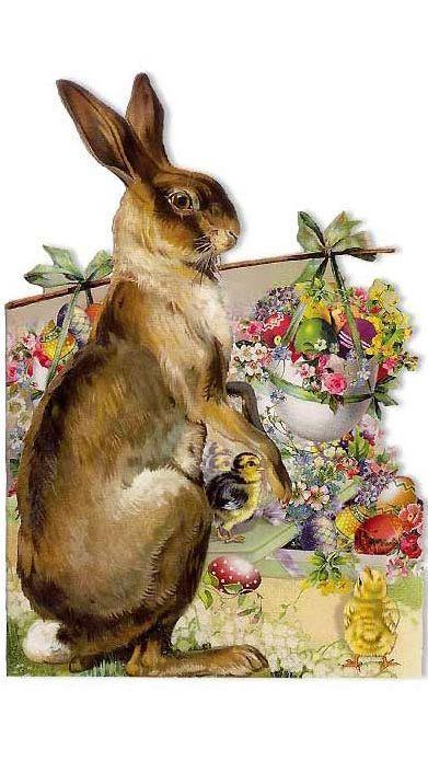 Открытки с зайцами и кроликами, подарки