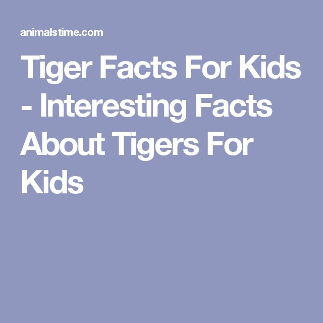 Tiger Facts For Kids - Interesting Facts About Tigers For Kids