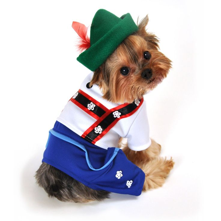 Bavarian Lederhosen Halloween Dog Costume - Blue