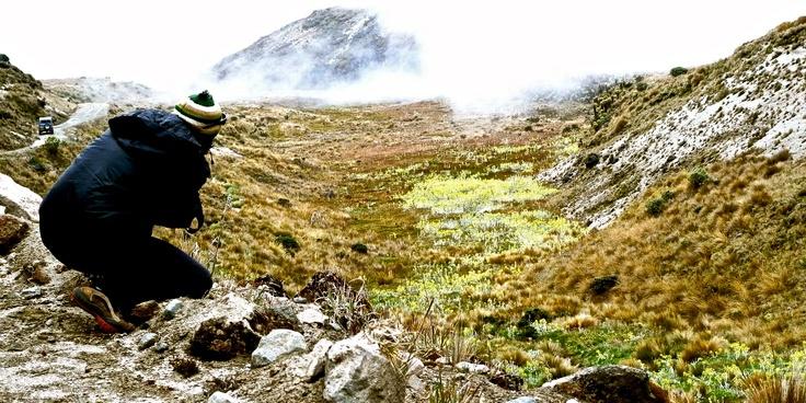 Parque Nacional de los Nevados, Colombia.