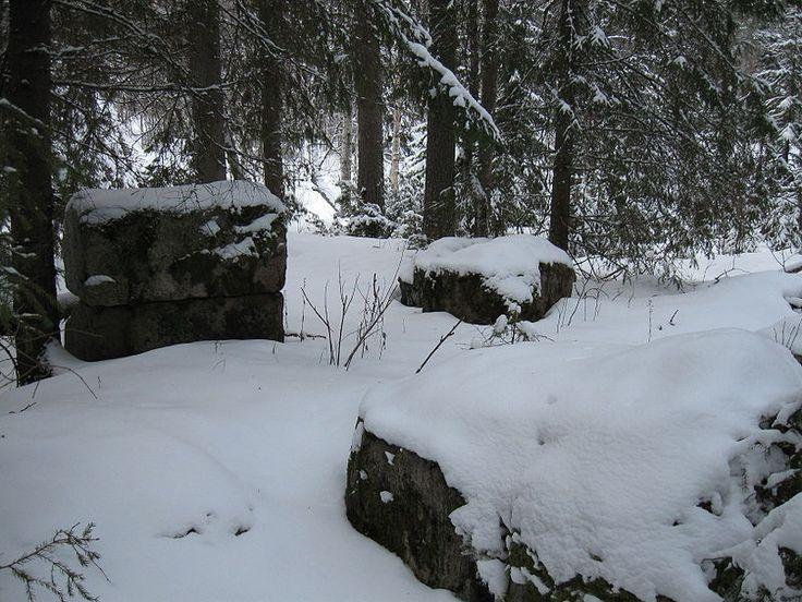 Sankka puusto peittää Utajärven Särkijärven Kurimolla sijainneen rautaruukin rakennelmien jäännöksiä