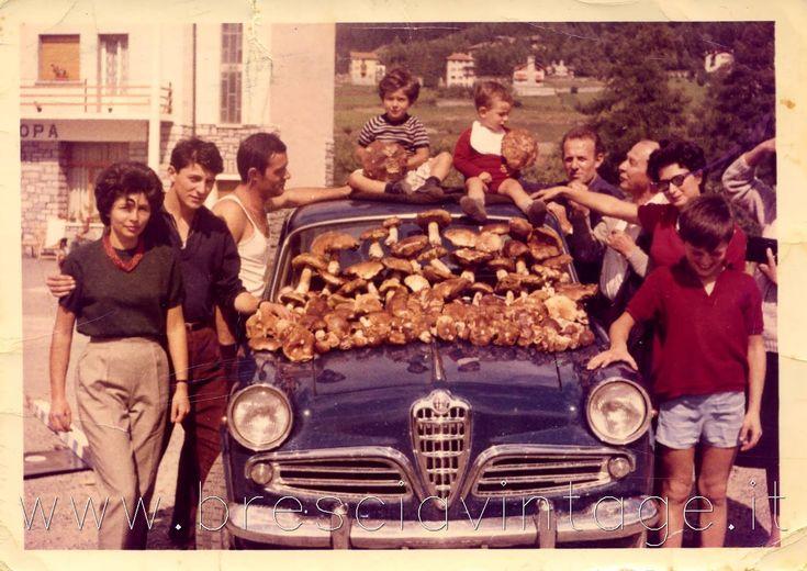 Abbondante raccolta di funghi - Ponte di Legno 1962 http://www.bresciavintage.it/brescia-antica/storie-di-persone/abbondante-raccolta-funghi-ponte-legno-1962/