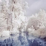 Winter Scene, Winter Trees, Winter Winter, Snow, Beautiful, Winter Wonderland, White Christmas, Fairies Tales