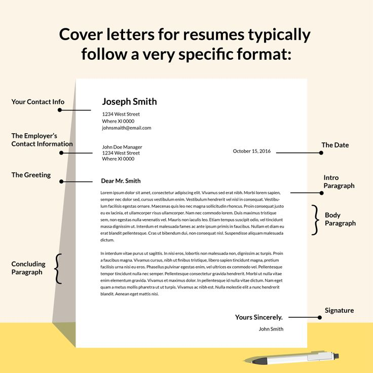 cover letter basics how write layout