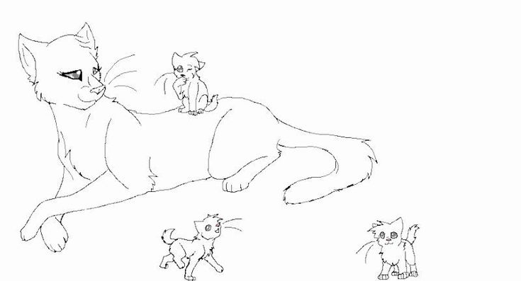 warrior cat coloring page luxury queen and kit lineart o3o