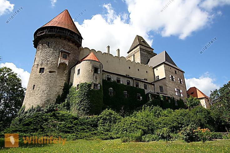 Burg Heidenreichstein, Waldviertel, Niederösterreich, Austria