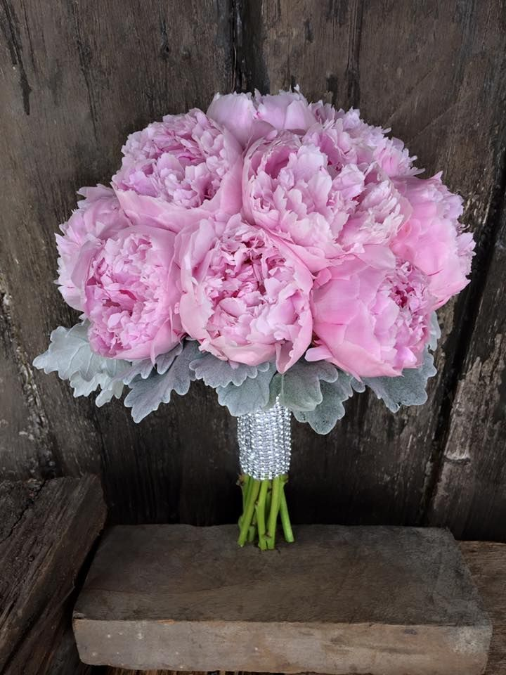 bouquet of pink peony and silver foliage
