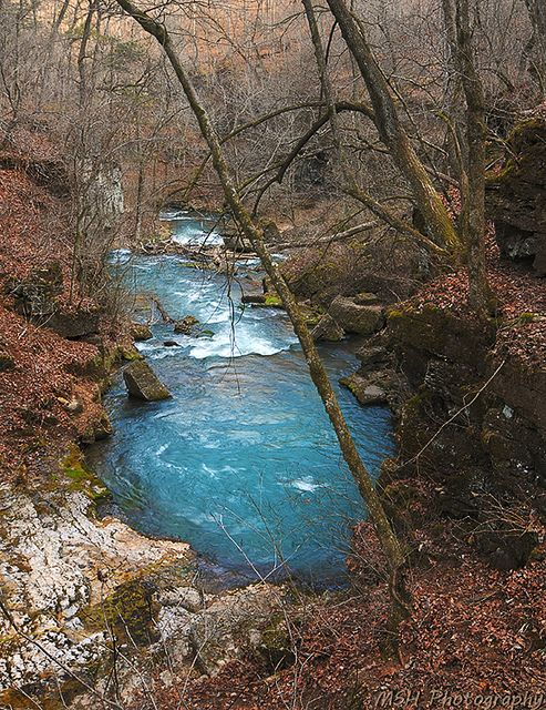 Greer Spring is the second largest spring in  Missouri at 222 million gallons of water per day and flows into the Eleven Point National Scenic River.