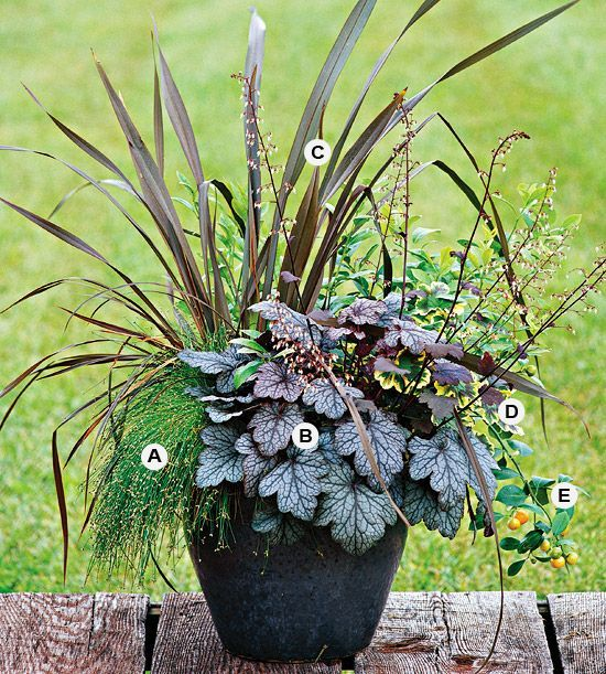 Container gardening ideas pictures     Gallery of Beautiful Container  Garden Ideas   Gardening74 best Phormiums images on Pinterest   Garden ideas  Plants and  . Gallery Of Beautiful Container Garden Ideas. Home Design Ideas