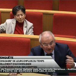 Sénat - Auditions de François-Xavier Bellamy puis de Gabrielle Déramaux | Pearltrees