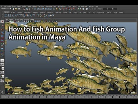 How to Make Fish Animation And Fish Group Animation in Maya(마야에서 물고기떼 애니...