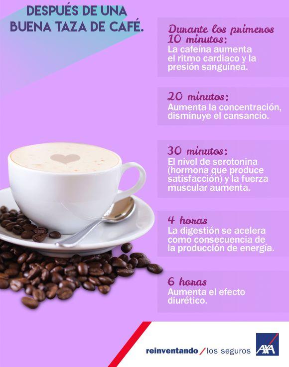 Si lo primero que buscas por la mañana es una taza de café. Conoce lo que pasa con tu cuerpo después de beberlo.