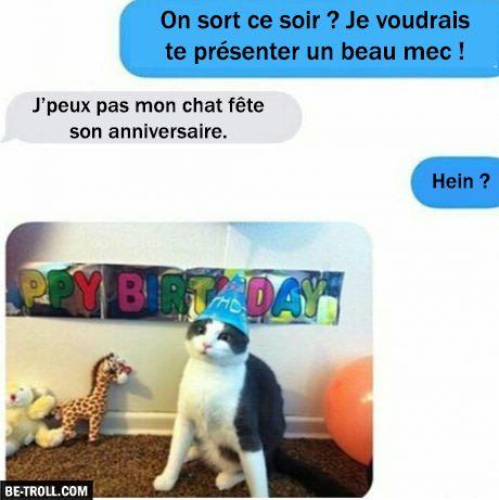 Je peux pas sortir mon chat fête son anniversaire… | Be-troll