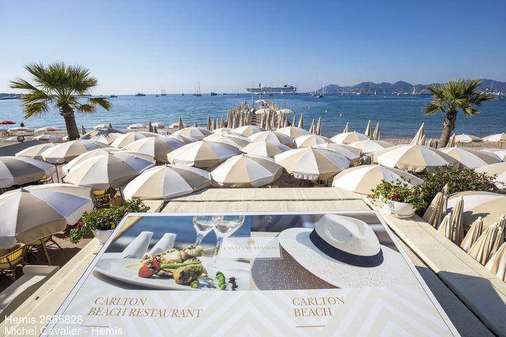 Zoom auteur #HemisTeam :  Cannes, plage privée du palace du Carlton sur le boulevard de la Croisette  Date prise de vue : 25/09/2016 Crédit : CAVALIER Michel / hemis.fr
