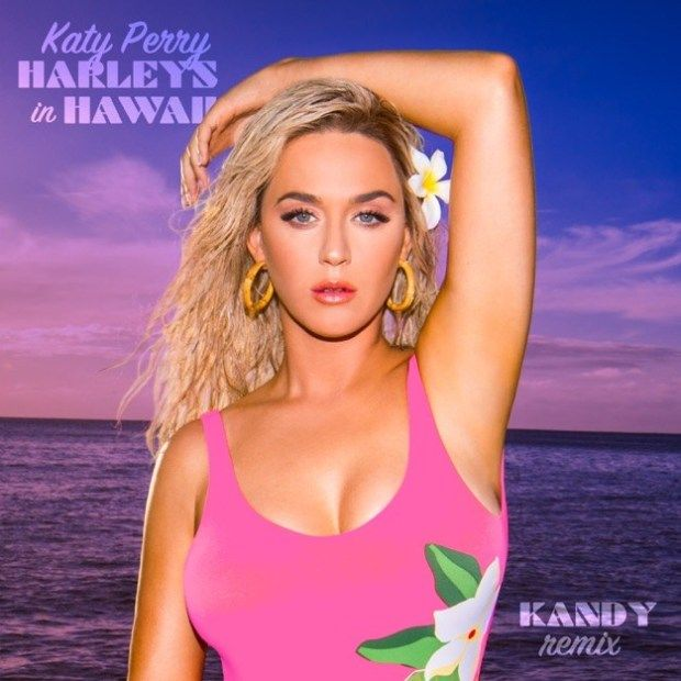 Download Mp3 Katy Perry Ft Kandy Harleys In Hawaii Kandy Remix Katy Perry Katy Perry Songs Katy