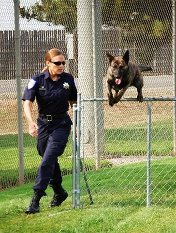 American Women Police Officers | ... Blog » Blog Archive » Sacramento Police Department Hires a New K-9