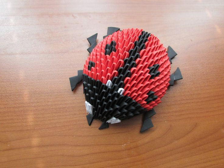 3D Origami Lady Bug Tutorial                                                                                                                                                                                 More