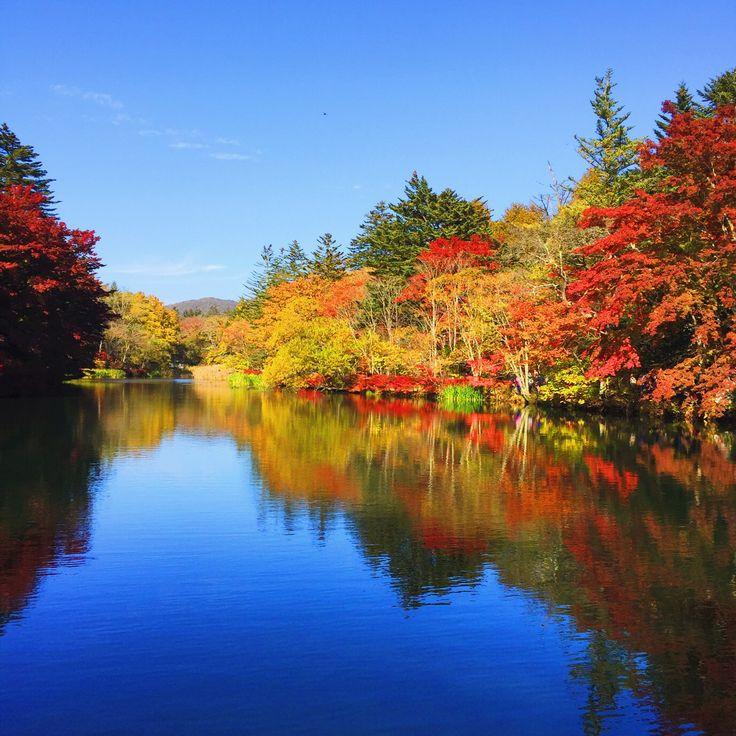 雲場池in北軽井沢!水面に映る紅葉がきれい!10月下旬の紅葉!