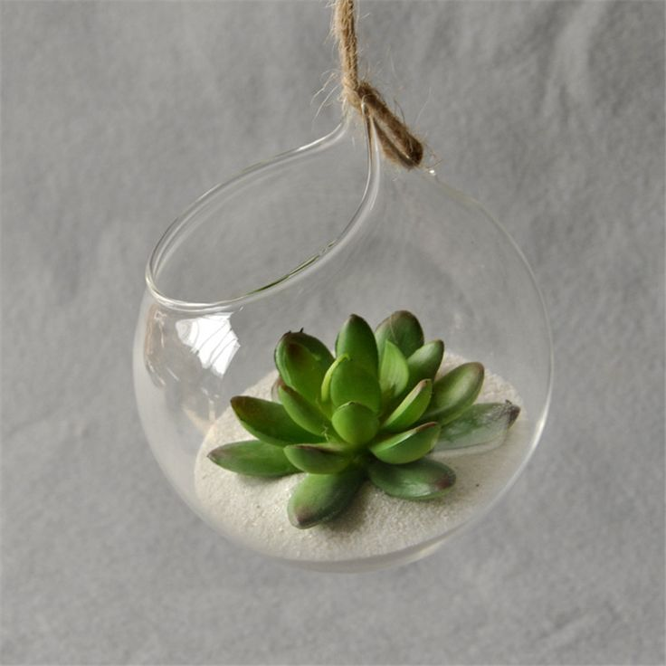 Hanging Glass Vase Hanging Terrarium Glass Vase Hydroponic Flower Planter Ornament Indoor Home Decor -  Cheap Product is Available. We give you the discount of finest and low cost which integrated super save shipping for Hanging Glass Vase Hanging Terrarium Glass Vase Hydroponic Flower Planter Ornament Indoor Home Decor or any product.  I hope you are very happy To be Get Hanging Glass Vase Hanging Terrarium Glass Vase Hydroponic Flower Planter Ornament Indoor Home Decor in best price. I…