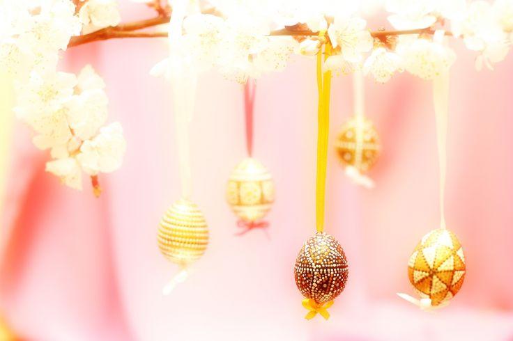 Бесплатное изображение цветущая ветвь с пасхальными яйцами От www.tOrange.ru #цветок #абрикос #ветка #веточка #цветущая #весна #православие #христианство #праздник #воскресенье #христианский #пасхальные #пасхальный #бог #украшение #храм #пасха #яйцо #ткань #фон #висит #писанка #писанки