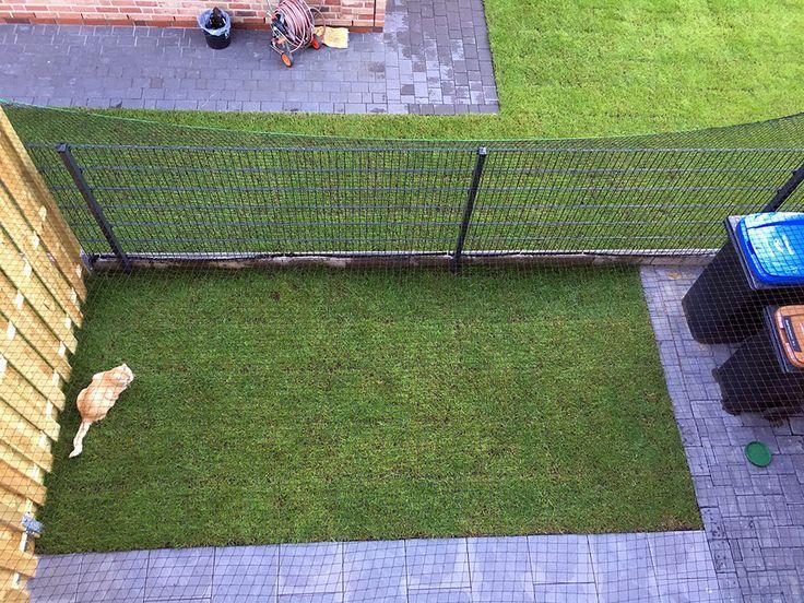 10 best katzengehege katzenzaun images on pinterest for Katzennetz balkon mit palmeras garden apartments