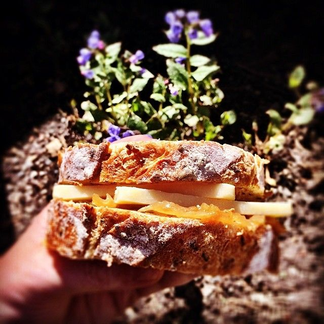 A Spring day with things actually blooming in the backyard... calls for a classic chutney & cheese kinda combo-fresh baked @JuliensHydro bread, Alpindon cheese & @Ratinaud French Cuisine onion jam. #CDNcheese #simplepleasures www.allyouneedischeese.ca/simplepleasures
